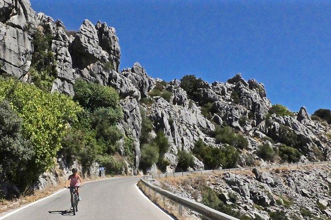 Cycling - Pileta Cave & Jimera - 25km - Moderate Level