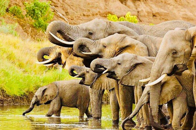 3 days Safari; Tarangire N.P, Ngorongoro Crater and Lake Manyara National Park