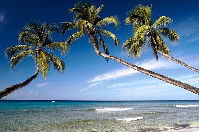 Take a 10 days vacation around Sri Lanka with an amazing beach experience