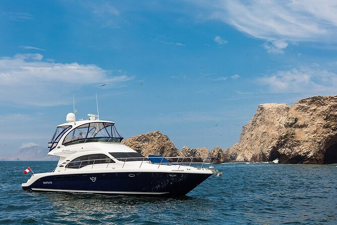 Full Day Luxury Yacht to Ballestas, Chincha & San Gallan Islands in Paracas