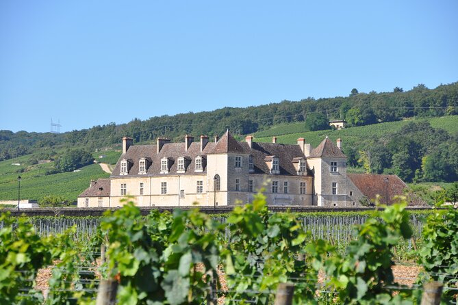 Multi Day Private Tour Vineyards and Heritage