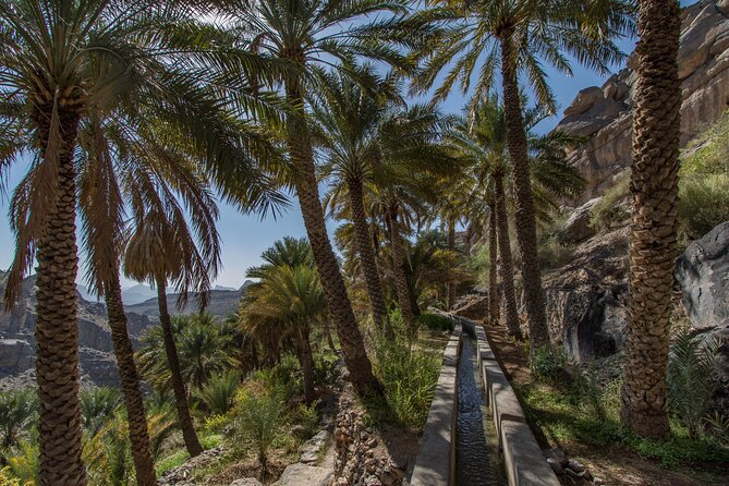 From Muscat: Excursion to Misfat Al Abriyeen and the Jabal Schams summit