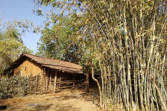 A Day with the Warli Tribe