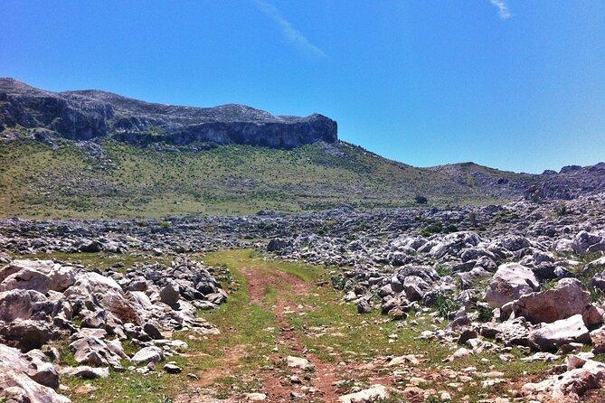 Hiking - Cartajima to Ronda - 13km - Moderate to Challenging level