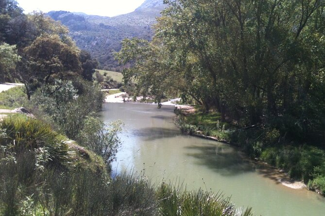 Hiking - Mr Hendersons Way - 17km - Challenging Level