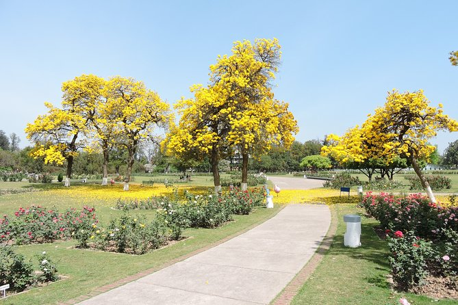 Highlights of the Chandigarh (Guided Half Day City Tour)
