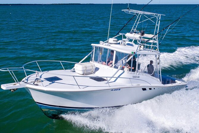 Reel Runner Gulf Adventures-Fishing Charters Options