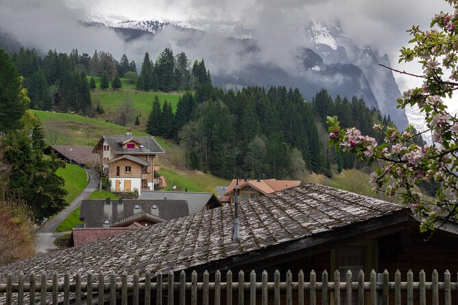 Private Tour of the best of Swiss Villages near Interlaken with a local
