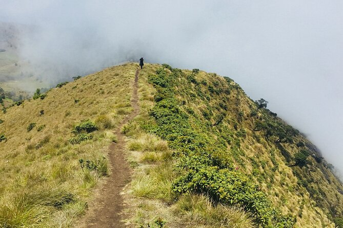 Day Trip to Nature Trails (Guided Private Sightseeing Experience from Bangalore)