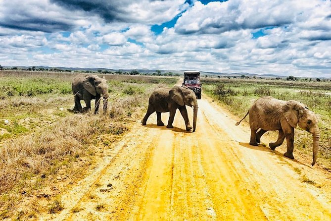 3 days Mikumi National Park Private safari