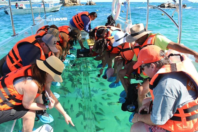 Cabo's only Clear Boat Tour to Lands End, Lover's Beach, the Arch and more!!