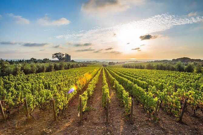 Full-Day Private Wine Tour in Nemea with Pick Up