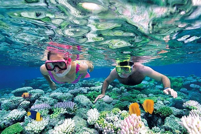 Discover Isla Mujeres from Cancun in a deluxe Catamaran with all included