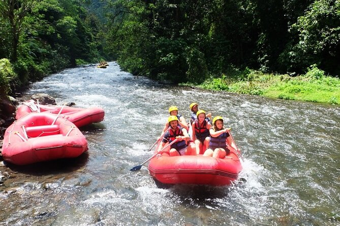 Ubud Bali White Water Rafting and Sightseeing Tour
