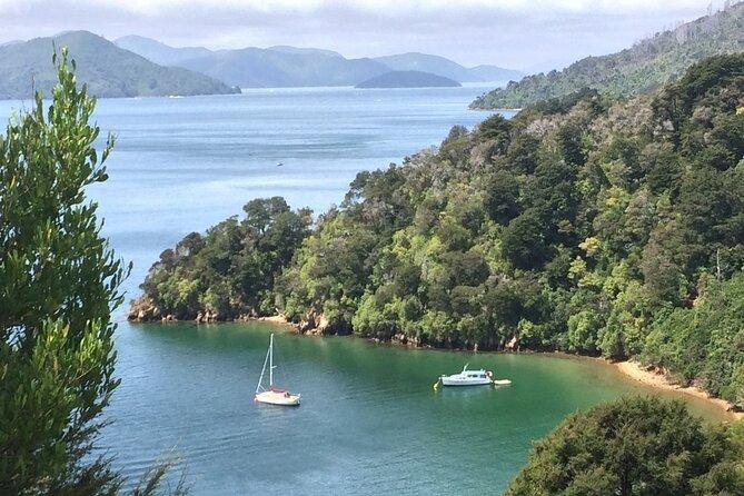 South Island Road Trip Delights: Custom Multi-Day 7D : 6N