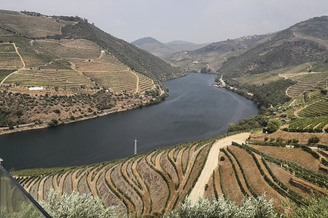 Douro valley day tour with visits/tastings included