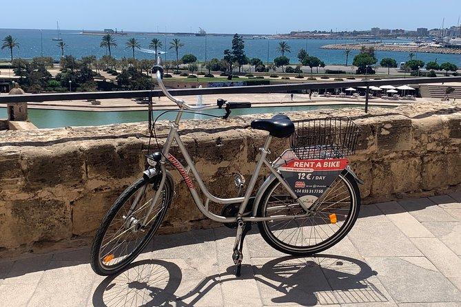 Best of Palma Bike tour