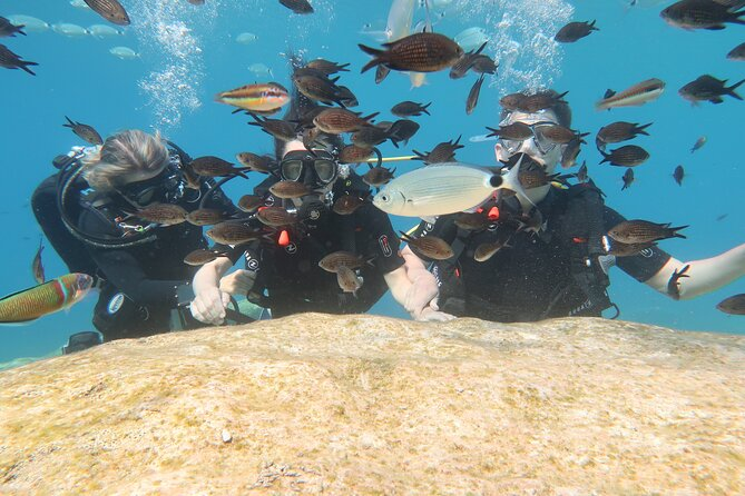 Try a Scuba Diving Experience