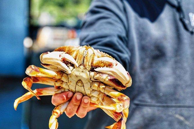 Coastal Exploration Food and Farm Tour