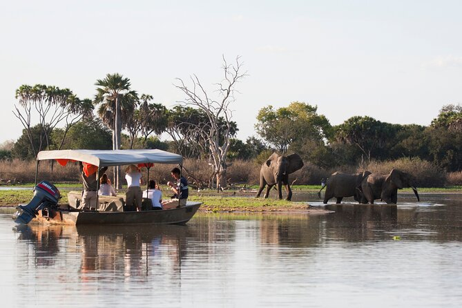 3 Days Selous Magic Safari