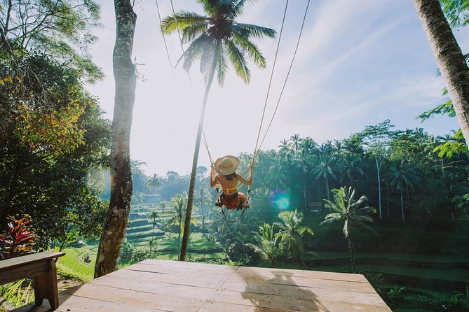 Ubud Highlight Private:Tegalalang Rice Terrace,Bali Swing and Holy Water Temple