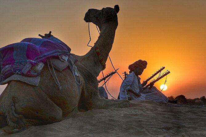 Sharm El Sheikh: Camel Ride in the Desert