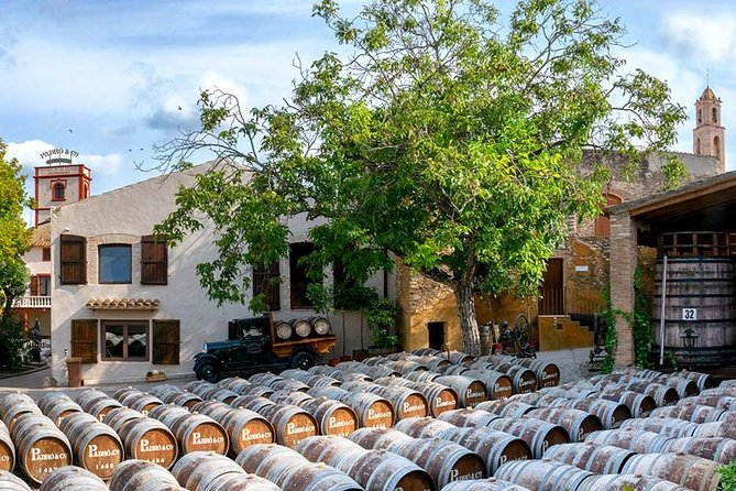 Ancient winery of vermouth, Tarragona & Reus: private Round-Trip Transfer