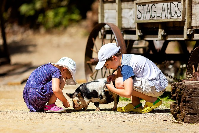 Skip the Line: Staglands Wildlife Reserve Entry Ticket