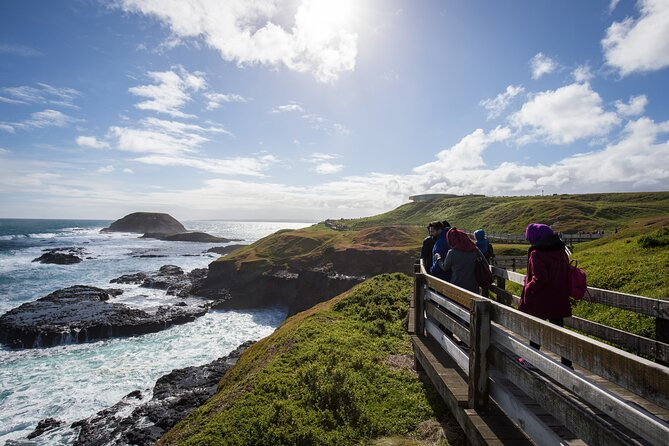Full-Day Bus Tour Phillip Island Wildlife and Brighton Beach