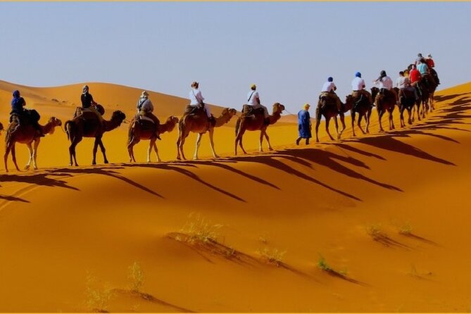 Expérience Camel Ride in Merzouga with 1 Night in Desert Camp