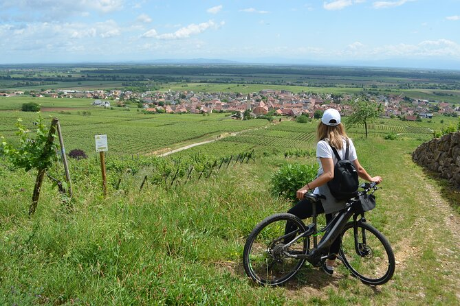 Self-guided bike tour in the Pfaffenheim vineyards