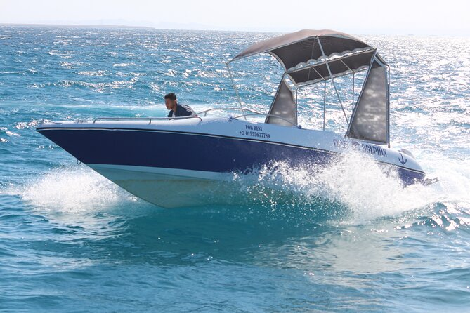 4 Hours With DOLPHINS By a Speed Boat Plus Sub Wing Game (Private) - HURGHADA