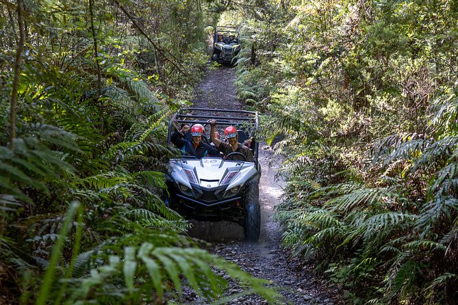 1 Hour Enchanted Forest Track - BUGGIES