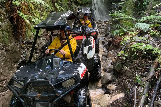 2 Hour Waterfall and Forest Track - BUGGIES