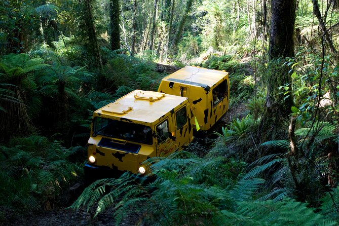 Off-Road Rainforest Hagglund Tour