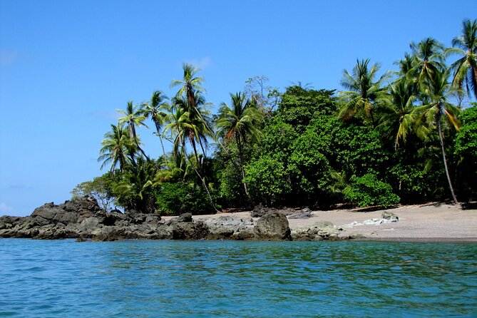 Private Day Trip from San Jose to Cahuita National Park (Caribbean Coast)