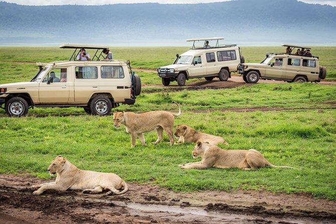 7 Days Endless Plains Safari - Luxury