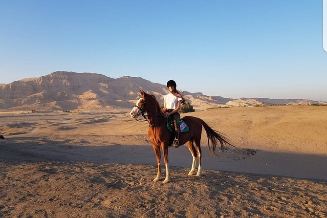 Private Horse Riding Tour in Luxor West Bank