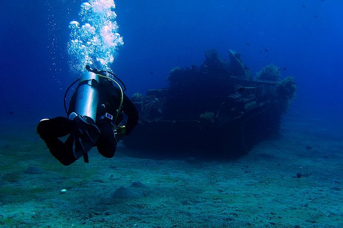 Discover the coral reefs in Aqaba - Scuba experience for beginners