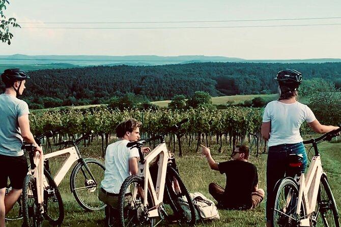 Half-day pleasure tour with e-bike in Lower Austria
