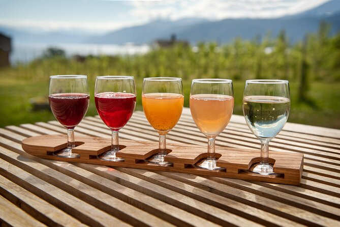 Fjord Cruise and Cidery Tour from Voss