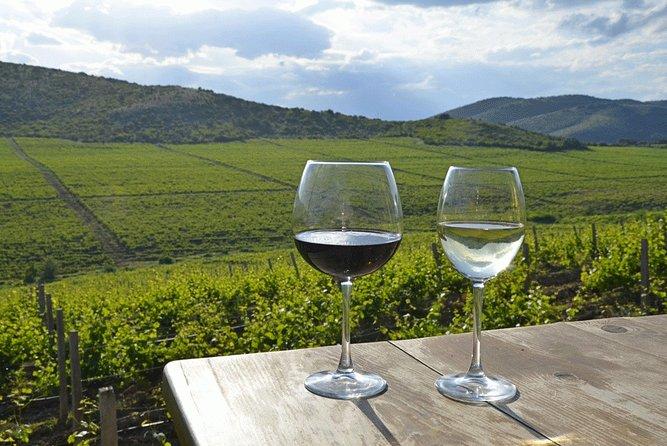Wine tour Macedonia