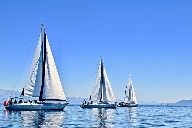 Private Half-day Sailing Tour