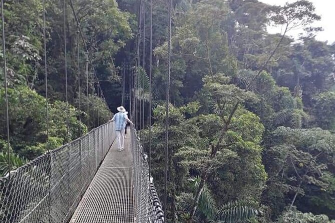 Private Hanging Bridges + Waterfall Tour