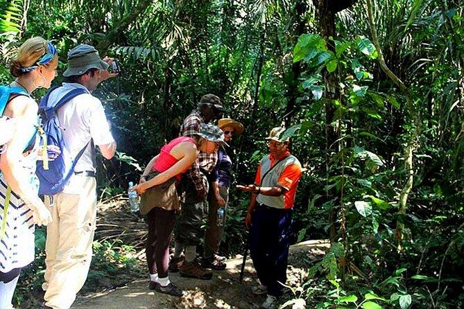 Amazon tours 3 Days (Tambopata National Reserve)