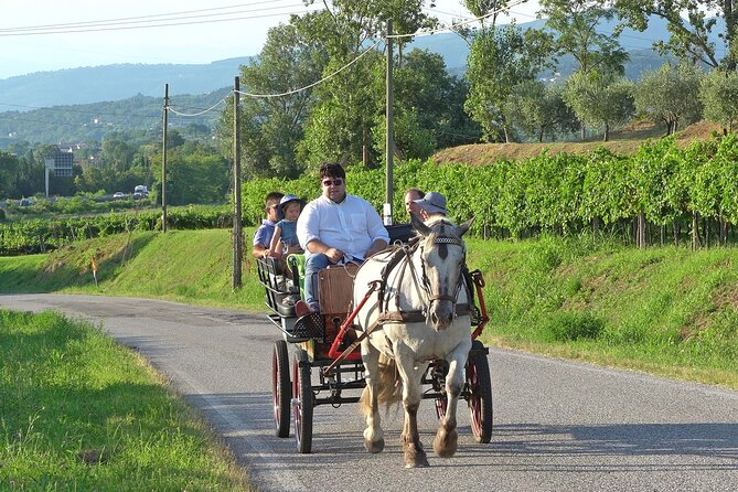 Horse Carriage Tour and Wine Tasting in Lazise