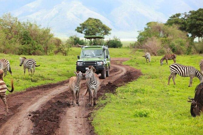4 Days Tanzania Wildlife Safari in True Style