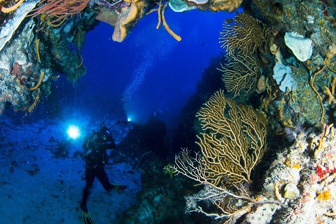 Diving in Cozumel All Inclusive