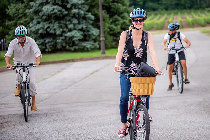Guided E-Bike Wine Tour of the Beamsville Bench