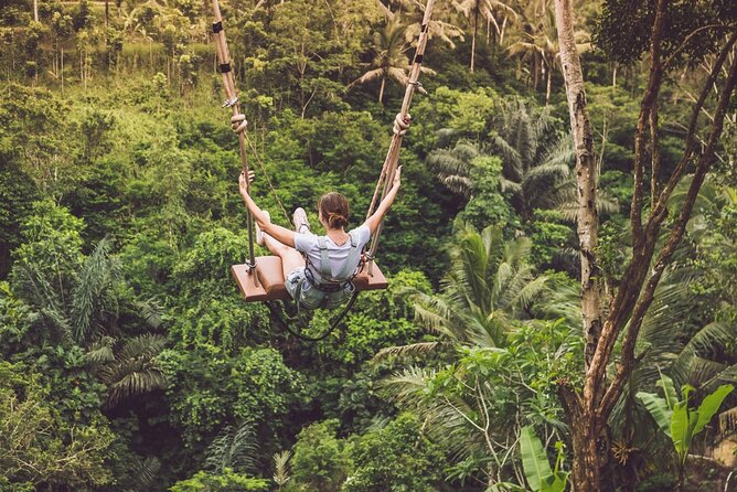 Private tour : Bali Swing Half-Day